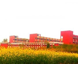 agricultural pic at anowara bioscience 1